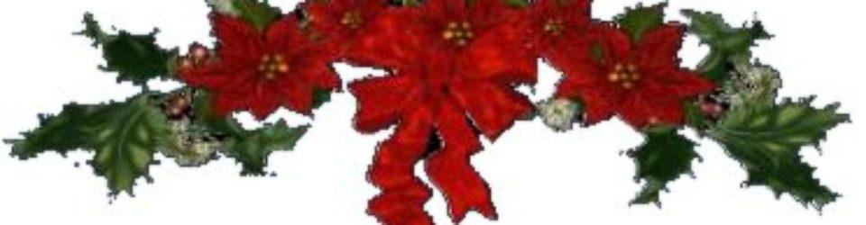Poinsettia Spray