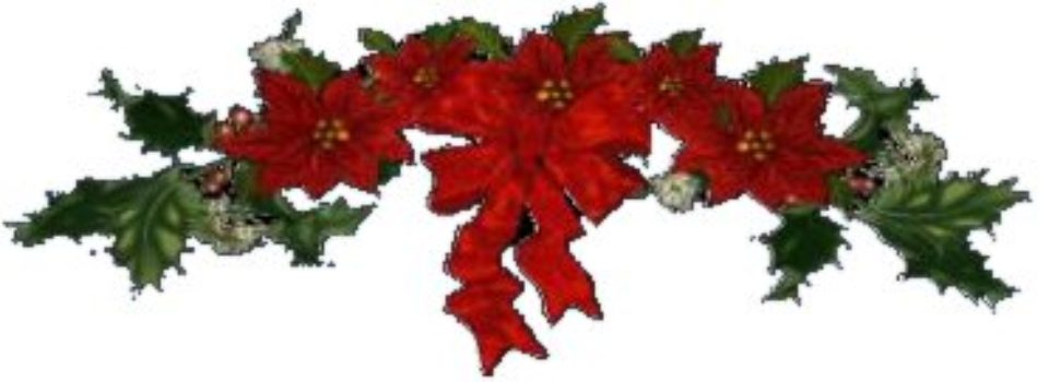 Poinsettia Spray